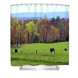 Shower Curtain featuring the photograph Countryside In Spring by Kathryn Meyer
