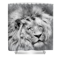 Shower Curtain featuring the photograph Courage by Karen Shackles
