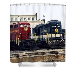 Cousins Shower Curtain by Richard Rizzo