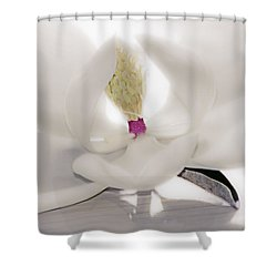 Shower Curtain featuring the photograph Coveted Fantasy by Janie Johnson