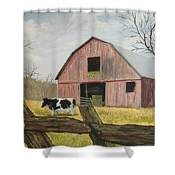 Shower Curtain featuring the painting Cow And Barn by Norm Starks