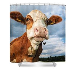 Cow Portrait Shower Curtain