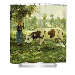 Cows At Pasture  Shower Curtain by Julien Dupre