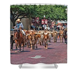 Cowtown Cattle Drive Shower Curtain by David and Carol Kelly
