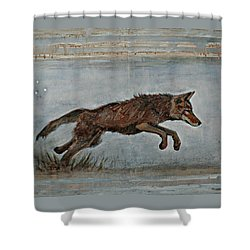 Coyote Ll Shower Curtain