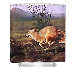 Coyote Run Shower Curtain by Rob Corsetti
