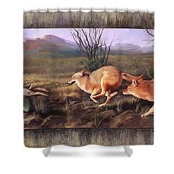 Shower Curtain featuring the painting Coyote Run With Boarder by Rob Corsetti