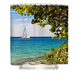 Cozumel Sailboats Shower Curtain by Mitchell R Grosky