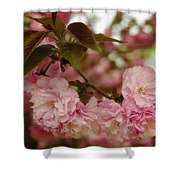 Shower Curtain featuring the photograph Crab Apple Blossoms by James C Thomas