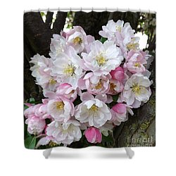 Crab Apple Blossoms Shower Curtain