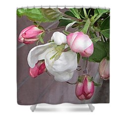 Shower Curtain featuring the digital art Crabapple Blossoms Miniature by Donald S Hall