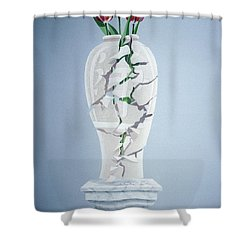 Cracked Urn Shower Curtain by Lincoln Seligman