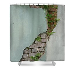 Cracked Shower Curtain by Valerie Reeves