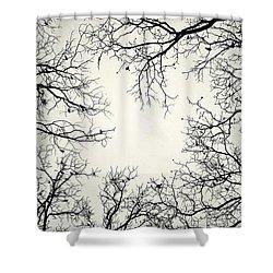 Cracks&crows Shower Curtain