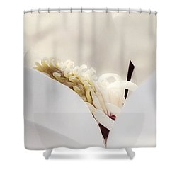 Shower Curtain featuring the photograph Cradled by Janie Johnson