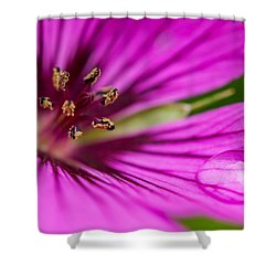 Shower Curtain featuring the photograph Cranesbill by Sabine Edrissi