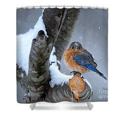 Cranky Can Be Cute Shower Curtain