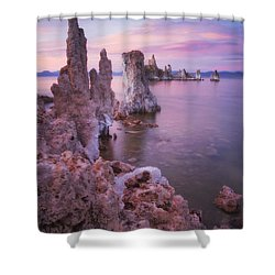 Crayola Funhouse Shower Curtain by Peter Coskun
