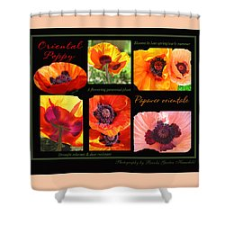 Poppy Love Shower Curtain by Brooks Garten Hauschild
