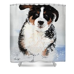 Crazy For Snow Shower Curtain by Liane Weyers