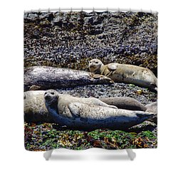 Creatures Comfortable Shower Curtain