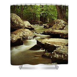 Creek At St. Peters Shower Curtain by Michael Porchik
