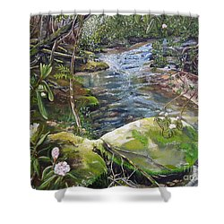 Creek -  Beyond The Rock - Mountaintown Creek  Shower Curtain