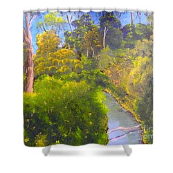 Creek In The Bush Shower Curtain by Pamela  Meredith