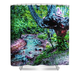 Shower Curtain featuring the photograph Creek Time Enchantment by Lanita Williams