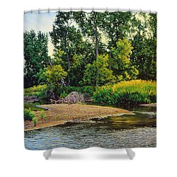 Creek's Bend Shower Curtain