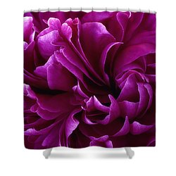 Crimson Chiffon Shower Curtain