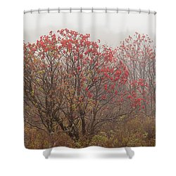 Crimson Fog Shower Curtain by Melinda Ledsome