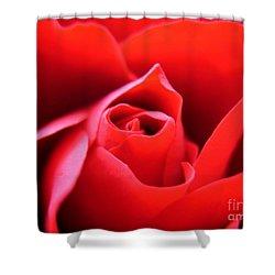 Crimson Shower Curtain by Patti Whitten