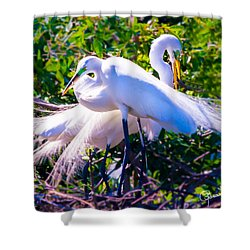 Criss-cross Egrets Shower Curtain