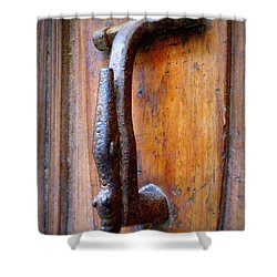 Crocodile Knock Shower Curtain by Lainie Wrightson