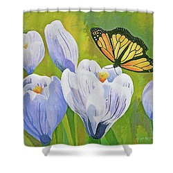 Crocus And Monarch Butterfly Shower Curtain
