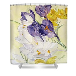 Shower Curtain featuring the painting Crocus by Carol Flagg