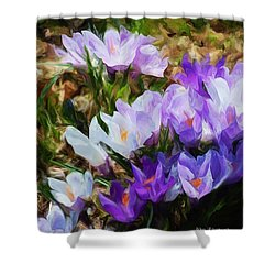 Crocus Fantasy Shower Curtain by David Lane