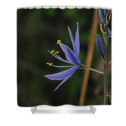Crocus Sativus Shower Curtain
