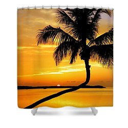 Crooked Palm Shower Curtain