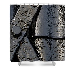 Shower Curtain featuring the photograph Cross Over by Wendy Wilton