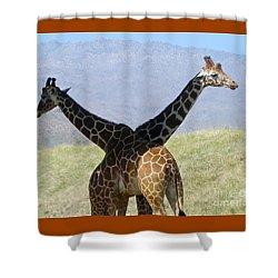 Crossed Giraffes Shower Curtain