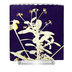 Crown Of Thorns - Indigo Shower Curtain by Shawna Rowe