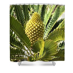 Crowning Glory Shower Curtain