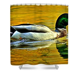 Cruisin Shower Curtain by Frozen in Time Fine Art Photography