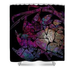 Crustacean Shower Curtain by Amanda Moore