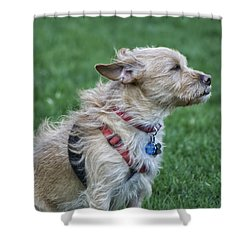 Shower Curtain featuring the photograph Cruz Enjoying A Warm Gentle Breeze by Thomas Woolworth