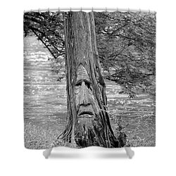 Cry Me A River Shower Curtain by Maria Urso
