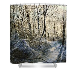 Crystal Path Shower Curtain
