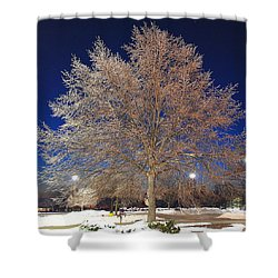 Crystal Tree Shower Curtain by Frozen in Time Fine Art Photography